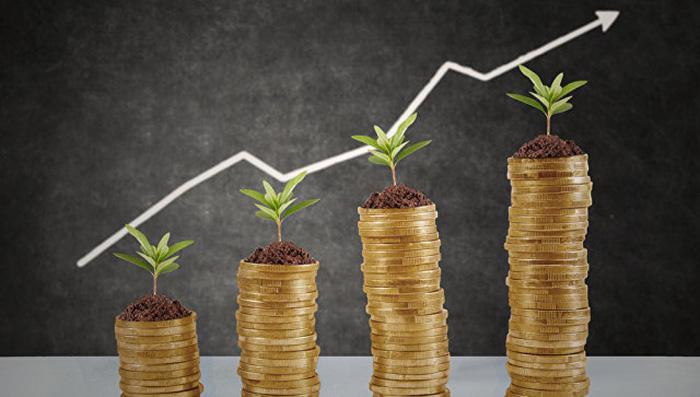 рост деньги займы как узнать свой инн через интернет по снилс физического лица онлайн